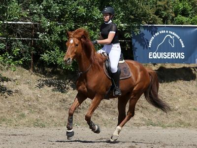 První ročník šampionátu vbezudidlovém jezdectví proběhne v Chrastavě