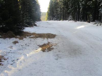 Jilemnická 50 se kvůli nedostatku sněhu odkládá na začátek března