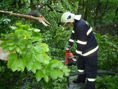 Bouřka přinesla popadané stromy na Liberecku a Českolipsku