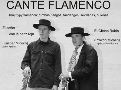 Restauraci Slunce v Benešově opět rozzáří španělské flamenco