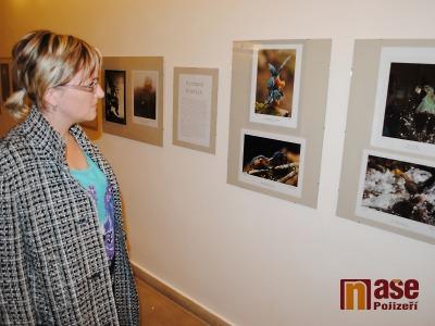 FOTO: Semilský fotoklub se usadil až do října v Pojizerské galerii