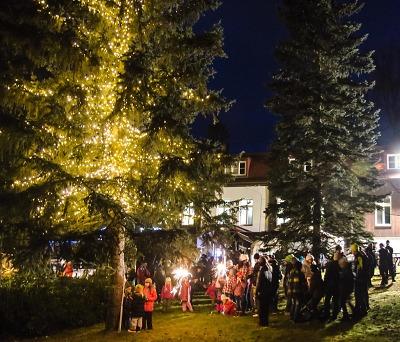 V Harrachově rozsvítí vánoční strom Krakonoš