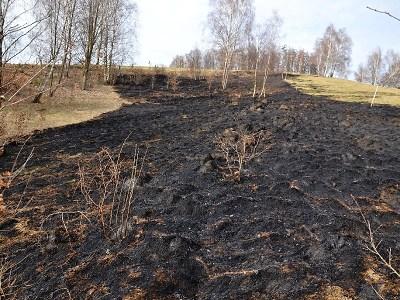 V Libereckém kraji ruší platnost opatření kvůli nebezpečí vzniku požáru