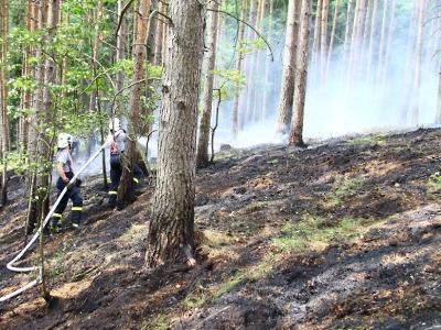 Liberecký kraj vyhlásil stav zvýšeného nebezpečí vzniku požárů