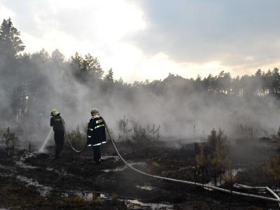 Další lesní požár vypukl pod Bezdězem