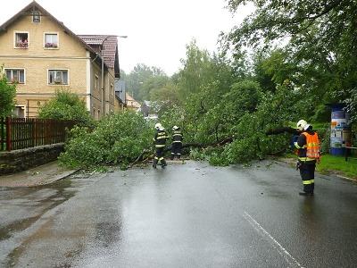 Kvůli popadaným stromům měli hasiči v kraji už 280 výjezdů