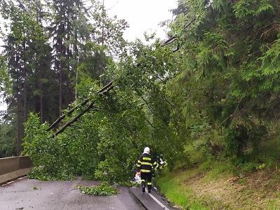 Po bouřce hasiči odstraňují stromy i čerpají vodu, nejvíce na Semilsku