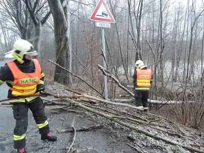 Těžký sníh láme stromy, hasiči pomáhají s jejich odklízením