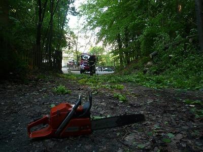 Po silném větru zasahovali hasiči zejména na Semilsku a Českolipsku