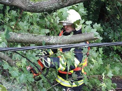 Krajští hasiči po bouřce opět odstraňovali popadané stromy