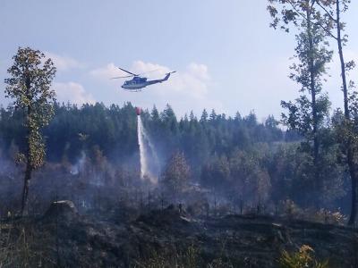 Hasiči zápolí s požárem lesa v Hrabačově u Jilemnice