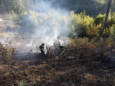 Požár lesního porostu u Železného Brodu zaměstnal hasiče