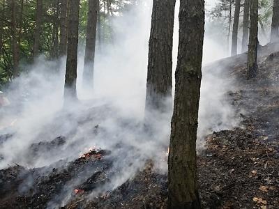Omezení kvůli suchu a nebezpečí požárů už pro Liberecko odvolali