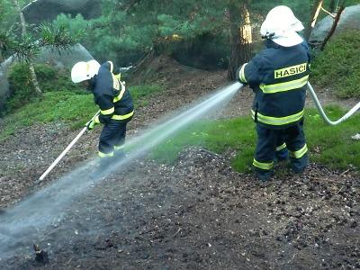 Hasiči varují před lesními požáry, nahrává jim sucho