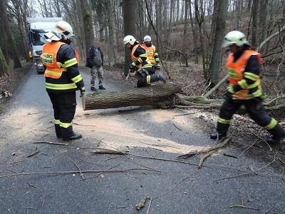 Vítr zaměstnal hasiče v Libereckém kraji