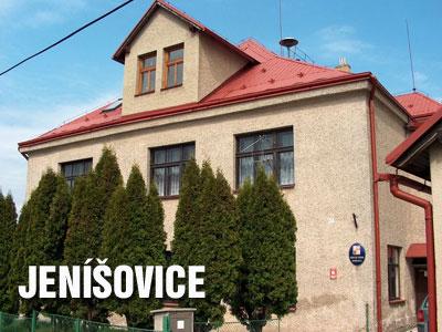 Zloděj pokácel v Jenišovicích 120 let staré borovice