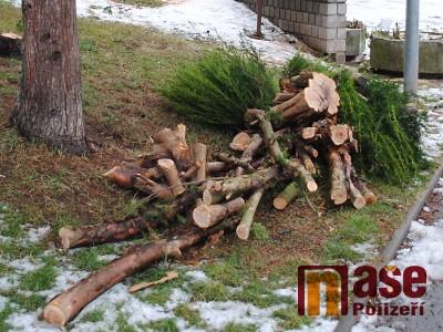 V březnu a dubnu v Turnově dojde k dalšímu kácení a ořezu dřevin