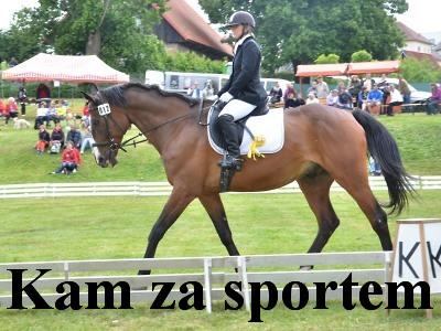 Kam za sportem a zábavou v Pojizeří o víkendu od 2. do 4. června
