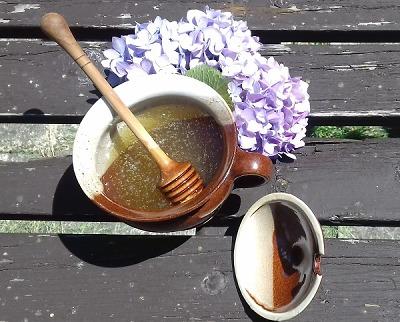 Med, svíčky i mateří kašička. Regionální výrobci jsou pilní jako včelky