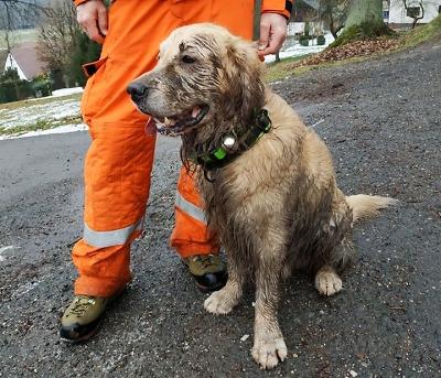 Pohřešovanou ženu ze Semil našli hasiči s pátracími psy