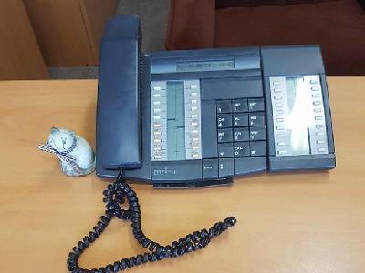 Podvodníci stále zkouší lákat po telefonu peníze od seniorů