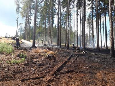 Hořel les v Jirkově u Železného Brodu