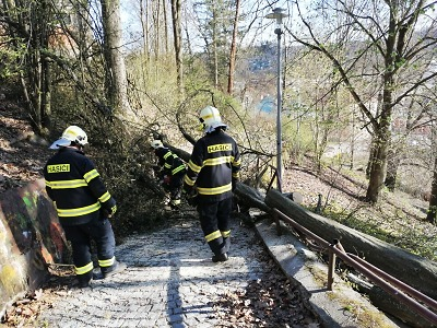 Krajští hasiči zasahovali po silném větru u vyvrácených stromů