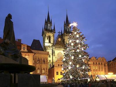 Praha našla Vánoční strom, vyrostl v Semilech