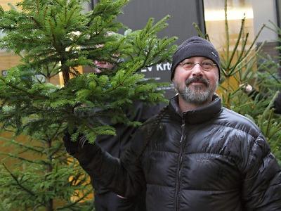 Stopadesát vánočních stromků s certifikátem FSC zmizelo během hodiny