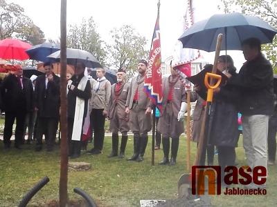 Video: V Liberci zasadili Strom republiky
