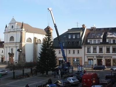 Vánoční strom stojí od 24. listopadu na turnovském náměstí