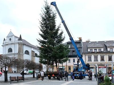 Na turnovské náměstí již nainstalovali vánoční strom