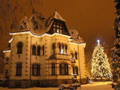 Anketa: Nejhezčí vánoční strom mají podle čtenářů v Desné