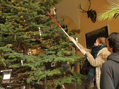 FOTO: Vánoční stromek v hale vrchlabského zámku má ozdoby z odpadu