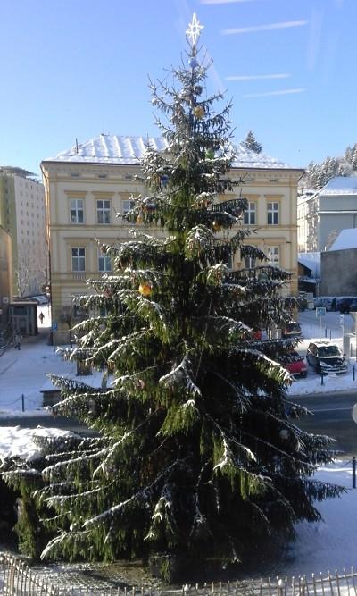 Anketa: Nejhezčí vánoční strom mají podle čtenářů v Železném Brodě