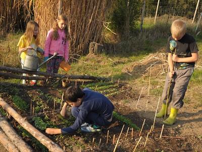 VTurnově vznikne komunitou podporované zemědělství