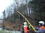 Problémy s popadanými stromy na Semilsku