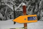 FOTO: Jilemnická padesátka přilákala znovu přes 700 lyžařů