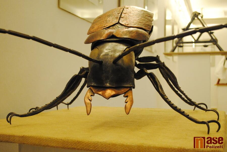 Výstava Kámen, kov a šperk v semilském muzeu<br />Autor: Petr Ježek