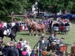 FOTO: Příznivci koní se sešli v Lomnici nad Popelkou