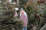 FOTO: Tradiční Libštátský jarmark nabízel plno lákadel