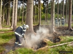 OBRAZEM: Hasiči likvidovali požár lesní hrabanky