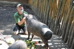 FOTO: Zoo patřila asijskému umění