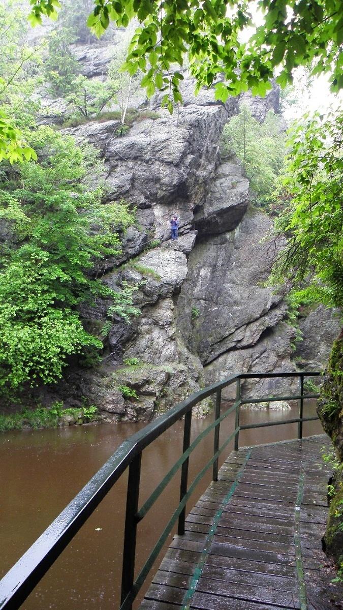 Via ferrata Vodní brána na protějším břehu Riegrovy stezky<br />Autor: Archív Lesy ČR