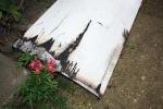 FOTO: Požár sklepa: Jeden člověk skončil v nemocnici