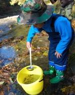 FOTO: Říčku Kamenici nově obývá devět tisíc lososů