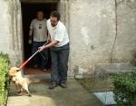 FOTO: Liška hledala útočiště na zámku