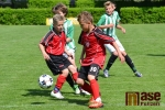 Turnaj přípravek s Mezinárodní účastí v Lomnici nad Popelkou
