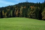 Takto by mohla vypadat nová rozhledna Na Vršku situovaná na vrchu Medenec