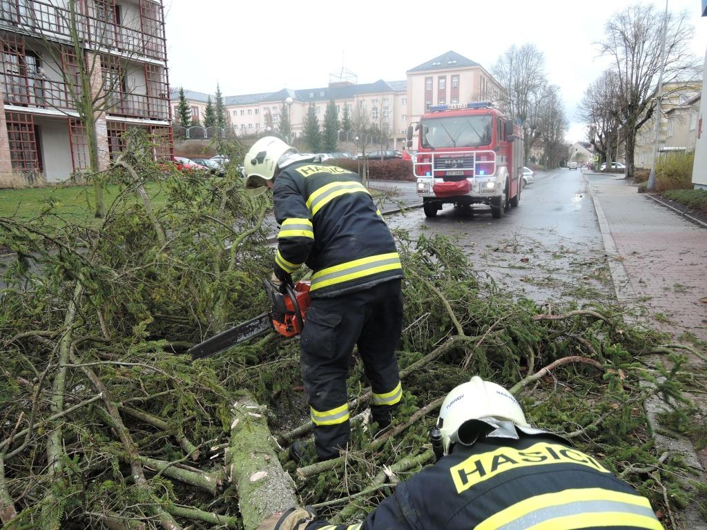 Vzrostlý strom v Turnově mezi školami a domovem pro seniory<br />Autor: HZS Libereckého kraje, stanice Turnov